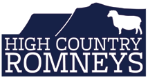 High Country Romneys Logo